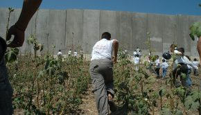 1024px-Palestinian_children_and_Israeli_wall