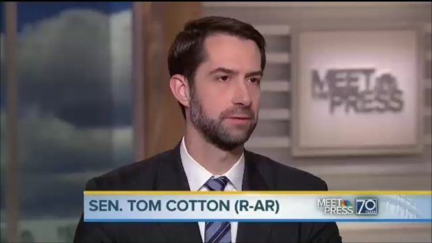 tom-cotton-620x349