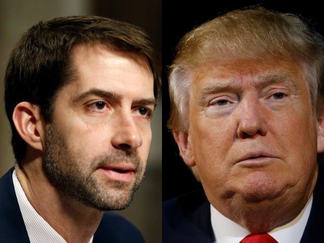 tom-cotton-donald-trump-AP-640x480